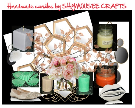 SHYMOUSEECRAFTS COLLAGE